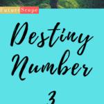 Destiny Number 3